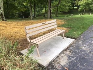 Bench in Park from Donation